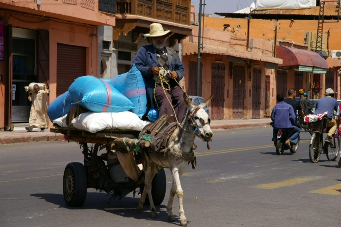 Maroc 1 262.JPG